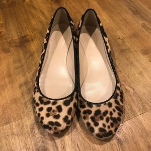 J. Crew Collection Janey Leopard Calf Hair Flats